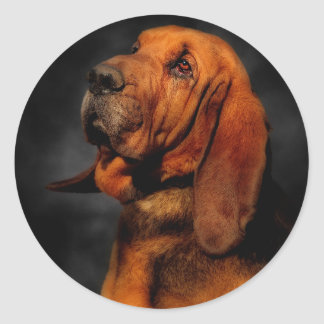 The Bloodhound Stickers