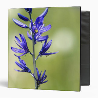 The blossom of a camas lily in Valley County, 3 Ring Binder