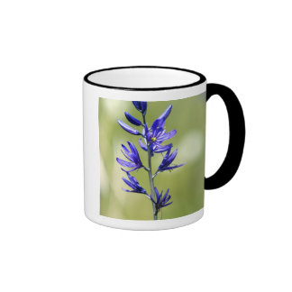 The blossom of a camas lily in Valley County, Ringer Mug