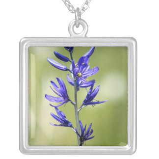 The blossom of a camas lily in Valley County, Square Pendant Necklace