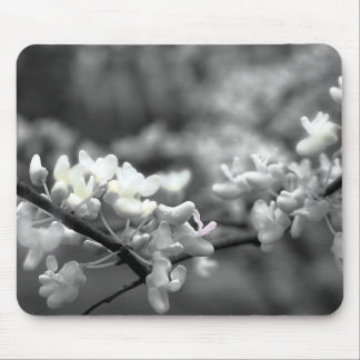 The blossoms of spring mouse pad