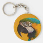 The Blue and Yellow Macaw Ara Ararauna Parrot Bird Key Chains