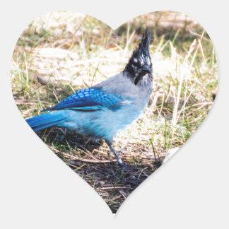 The Blue Bird of Happiness Heart Sticker
