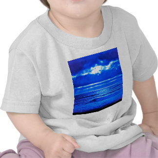 The Blue Moonscape. Tee Shirts