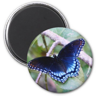 """""""The Blue One"""" Butterfly Photography Round 2 Inch Round Magnet"""
