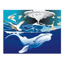 The blue whale postcard