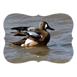 The Blue Winged Teal Catching A Wave 5x7 Paper Invitation Card