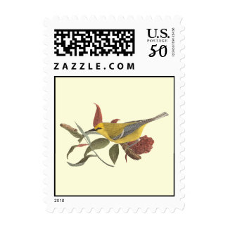 The Blue-winged Warbler	(Vermivora solitaria) Postage