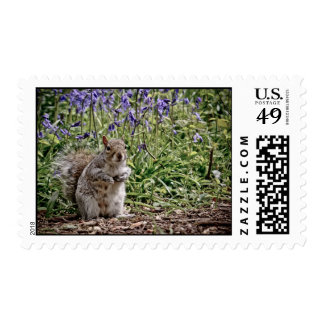 The Bluebell Gardener Postage Stamps