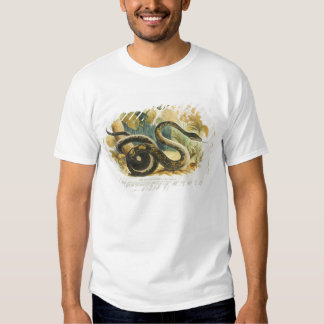 The Boa Constrictor, educational illustration pub. T-Shirt