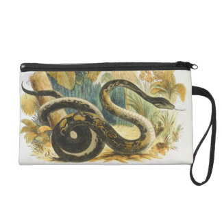 The Boa Constrictor, educational illustration pub. Wristlet Purse