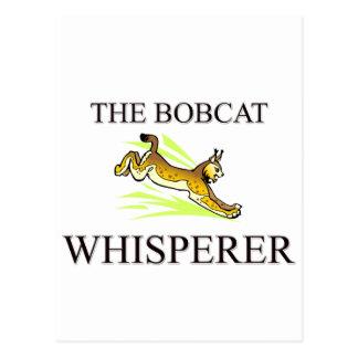 The Bobcat Whisperer Post Cards