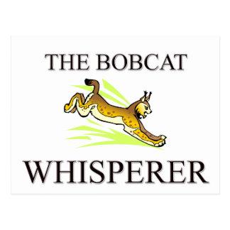 The Bobcat Whisperer Post Card