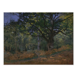 The Bodmer Oak, Fontainebleau Forest Poster