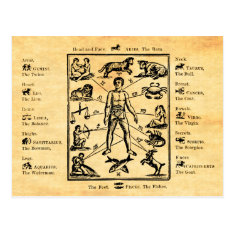 The Body, As Governed By The Twelve Constellations Postcard at Zazzle