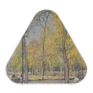 The Bois de Boulogne Speaker