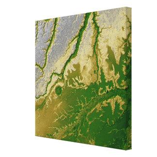 The Bolivian Amazon Canvas Print