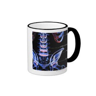 The bones of the lower back ringer coffee mug