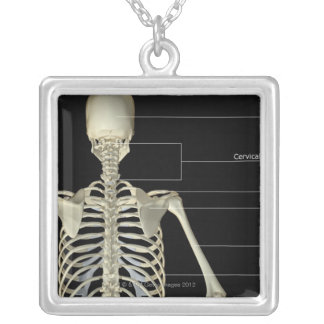 The bones of the upper body silver plated necklace