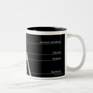 The bones of the upper body Two-Tone coffee mug