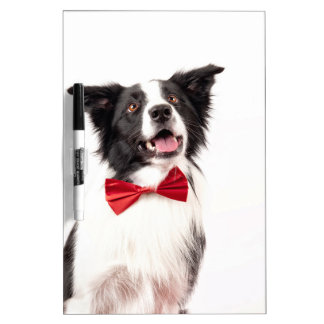 The Border Collie Dry-Erase Whiteboards