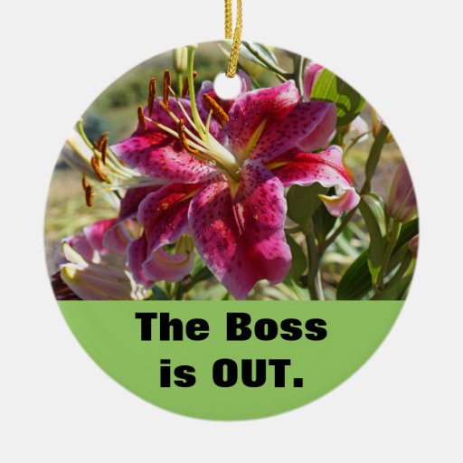 The Boss is OUT signage Boss is in ornaments Lily