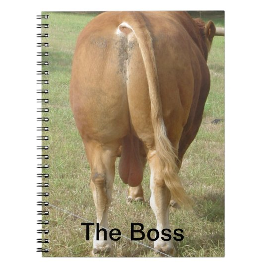 The Boss - Limousin Bull Notebook