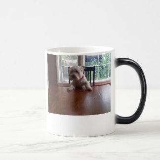 The Boss Magic Mug