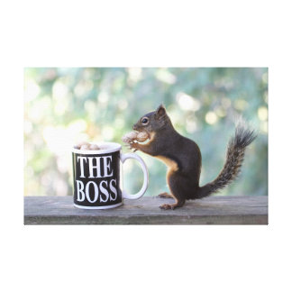 """The Boss"" Squirrel Canvas Print"