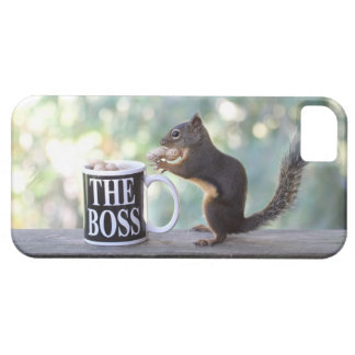 The Boss Squirrel iPhone 5 Covers
