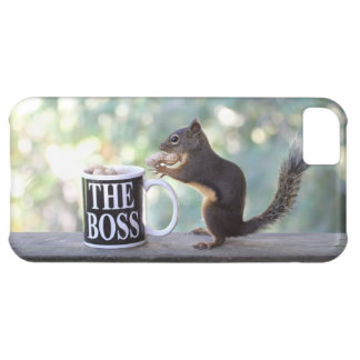 The Boss Squirrel iPhone 5C Case
