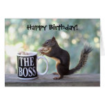 The Boss Squirrel Greeting Cards