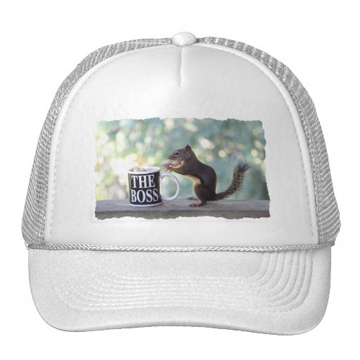 The Boss Squirrel Mesh Hats