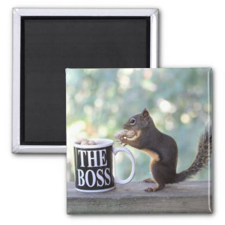 """The Boss"" Squirrel Magnet"