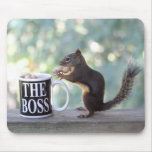 """The Boss"" Squirrel Mouse Pads"