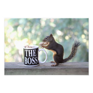 """The Boss"" Squirrel Photo Print"