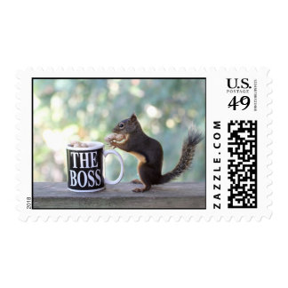 """""""The Boss"""" Squirrel Postage Stamp"""