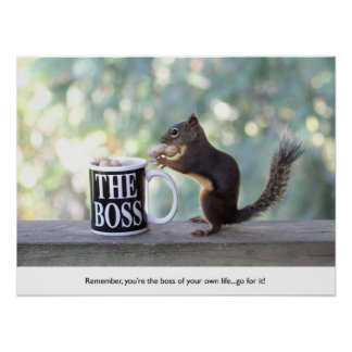 """The Boss"" Squirrel Poster"