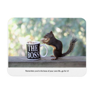 """""""The Boss"""" Squirrel Flexible Magnets"""
