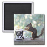 """The Boss"" Squirrel Refrigerator Magnet"