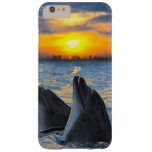 The bottle-nosed dolphins in sunset light barely there iPhone 6 plus case