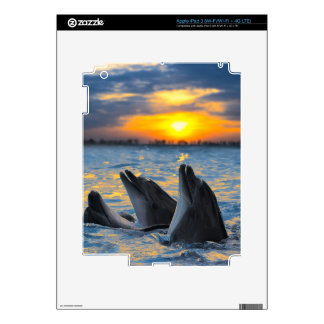 The bottle-nosed dolphins in sunset light decals for iPad 3