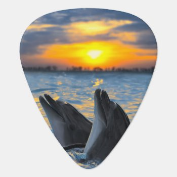 The Bottle-nosed Dolphins In Sunset Light Guitar Pick by wildlifecollection at Zazzle
