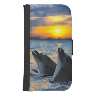 The bottle-nosed dolphins in sunset light phone wallet