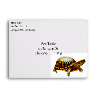 The Box Turtle Envelope
