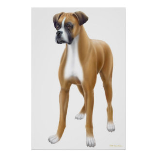 The Boxer Dog Print