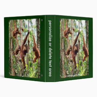 The Boys in the Rainforest Hood Binder