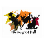 The Boys Of Fall Post Cards