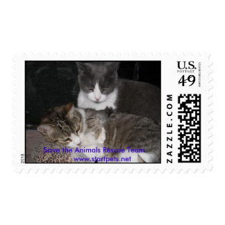 The Boys Postage Stamp