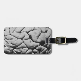 THE BRAIN OF CHARLES BABBAGE (1909) LUGGAGE TAG